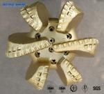 """12 1/4""""PDC Bit with 6 Wings Drilling Tools Downhole Tools"""