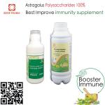 Veterinary Herbal Extract Immune Booster Oral Liquid Astragalus Polysaccharides