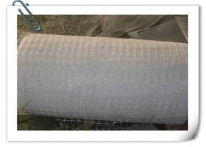 China Horizontal Plastic Climber Plant Supporting Net , Extrusion Type Green Plastic Netting on sale