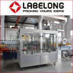 Automatic Bottle Mineral Water Filling Line/Water Bottling Machine