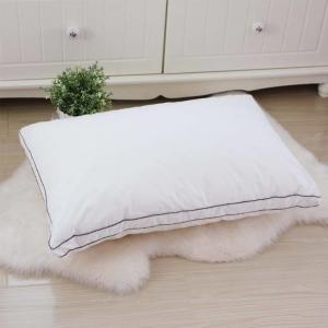 China Lightweight Hotel Collection Pillows 80% Velvet Down And Color Piping Edge With 48 * 74cm on sale