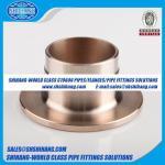 reborde Reborde-compuesto interno del cuello de la soldadura del reborde de cobre del níquel UNS C70600 CUNI 9010 - estruendo 86037