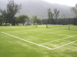 China Newest 30mm artificial tennis grass SJBDS30 on sale