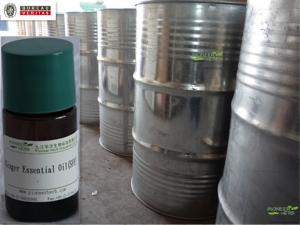 China Ginger Root Essential Oil (CO2 Extracted) on sale