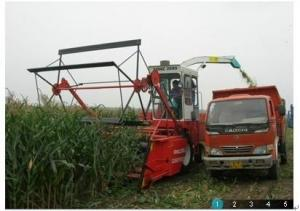 China Maize Silage Machine on sale