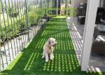 China Animal Decorations Synthetic Turf Grass Environment Friendly Material wholesale