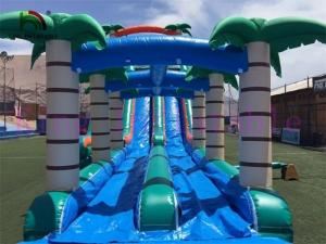 China Selva Double Lanes PVC Inflatable Water Slide Green / Blue Slide With Swimming Pool on sale