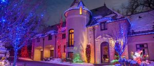 China LED String Lights Tree Lights for Home and Garden Decoration Christmas light Festival light on sale