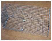 China Raccoon/Ferrets Trap Cage on sale