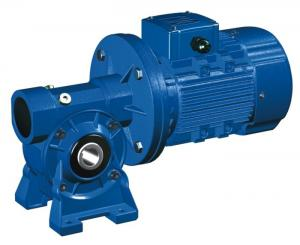 China High Speed Motovario NMRV 040 Worm Gear Reducer / Hollow Shaft Gearbox on sale