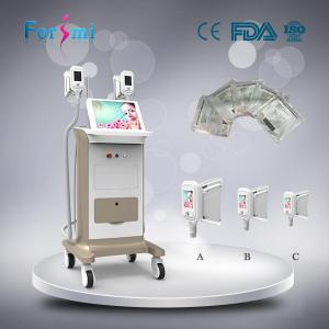 China Best cellulite removal machine freeze body fat weight loss body shaper slimming machine on sale