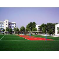 7000 DTEX PE Total Effect Artificial Turf / Lawn Sports for Badminton / Hockey Venues