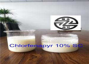 China Low Toxicity Organic Insecticide Products Pesticide 10% SC Chlorfenapyr on sale