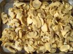 Sterilized Canned Champignon Mushroom Salt Preservation Process