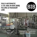 Linha de empacotamento totalmente automático do BABADOR da máquina de enchimento da Saco-em-caixa de 5L 10L 20L