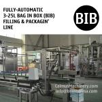 Fully-automatic 5L 10L 20L BIB Filling Machine Bag in Box Packaging Line