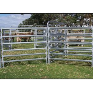 China Dust Proof Galvanized Livestock Panels , Portable Cattle Panels Easy Maintenance on sale