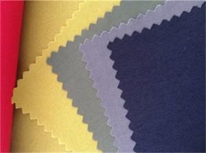 China Nylon Outdoors Sports Wear Fabrics on sale
