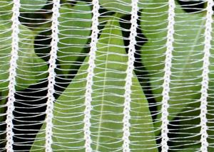 China Plastic Transparent Anti Hail Garden Plant Netting For Agriculture Using on sale