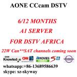 China 6 month/One year A1 cccam account Aone account A-one All in one account for dstv wholesale