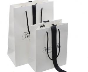 China Stylish C2s Paper Packaging Bags For Promotion, Printed Paper Hand Bag For Gift Packing on sale