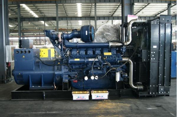 1000kva Perkins Diesel Generator 800kw 3 Phase With