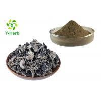 China 100% Vegetable Extract Powder Ground Auricula Dehydrated Dried Black Fungus Powder on sale