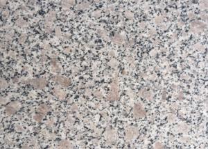 China GranitE G383 Material Bianco Antico Granite Slab Grey Flower Pearl Color on sale
