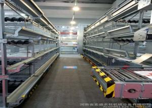 China High Efficiency Egg Collection Systems Easy To Use And Manage For Chickn Farm Used on sale