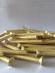 China Countersuck CSK flat head screws machine thread copper golden coating special screw lock system on sale