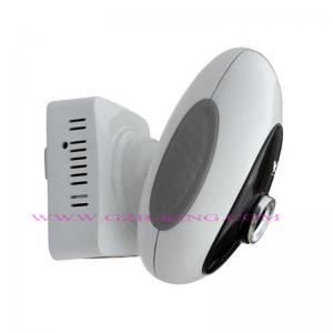 China GSM/MMS home security system with camera on sale