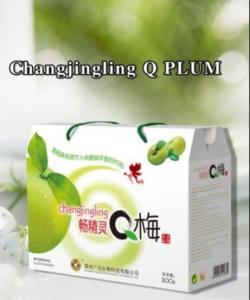 China Slim Dried Sour Plum Candy on sale