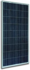 China 6 inch Polycrystalline PV Module, 125W - 145W on sale