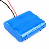 China 26.4Wh 2200mAh Small 12 Volt Lithium Battery on sale