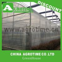 China Large size Multi-span greenhouse  roof vent greenhouse on sale