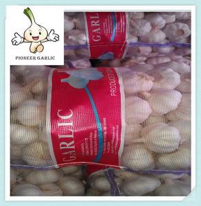 China Hot Sale 2016 price of Chinese natural garlic/normal white/pure white garlic on sale