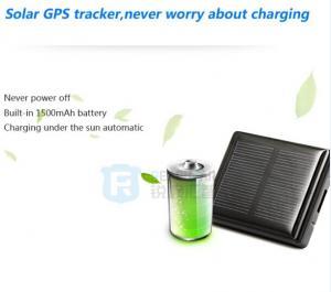China Server software sheep animal tracking gps tracker/advanced google earth gps gsm vehicle tr on sale