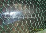 Rede de arame revestida durável do Pvc Gabion, fio de galinha resistente que cerca para a exploração agrícola