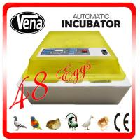 Hot sales Good quality Automatic Mini Egg Incubator with CE certificate