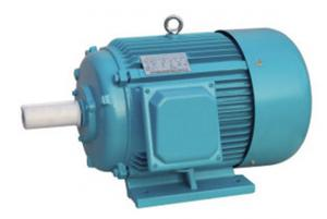 China 6 Pole 3 Phase Induction Motor Cast Iron Housing For Agriculture Machinery on sale
