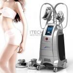 Body Slimming And Shaping Cryolipolysis 2 Handles Fat Freezing Machine Weight Losing Slimming Machine