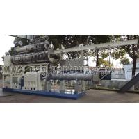 Jinan Eagle large capacity wet steam pet dog food twin screw extruder produciton line machine