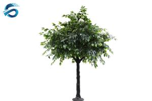 China Imitation Ficus Bonsai Tree , Artificial Outdoor Plants Last For 2 Yrs on sale