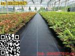Construcción fácil tejida PP de la estera de la tela de la cubierta del control de malas hierbas del geotextil