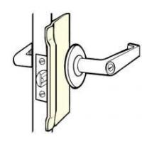 Latch Protector Key in Lever