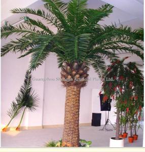 China fiberglass project decoration artificial date palm tree(H:3--30m) on sale