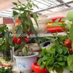 suelo de arcilla orgánico durable del invernadero de los medios de crecimiento