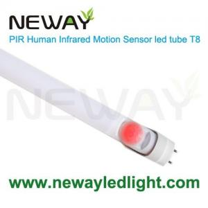 China 24W 5 Foot LED T8 Light Bulbs With Infrared PIR Motion Sensor on sale