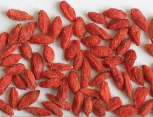 China Organic Dried Natural Wolfberry Fruit Goji Berry / Wolfberry Strengthen Immunity on sale