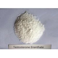 99% Bodybuilding Steroid Powder Testosterone Enanthate for Muscle Mass CAS 315-37-7